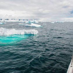 Antarktyda – Franek i Tomek Bukowscy